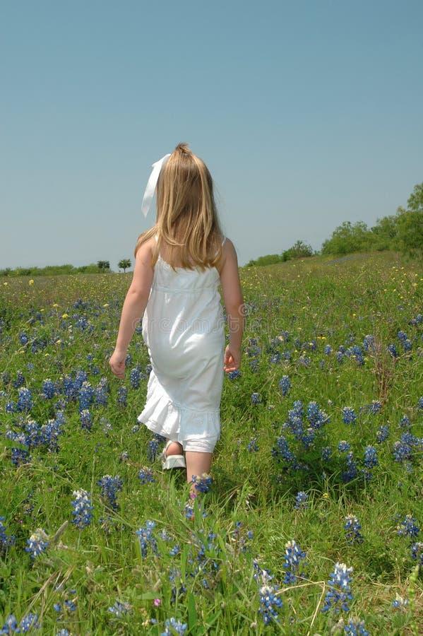 Het lopen in Bloemen stock afbeeldingen