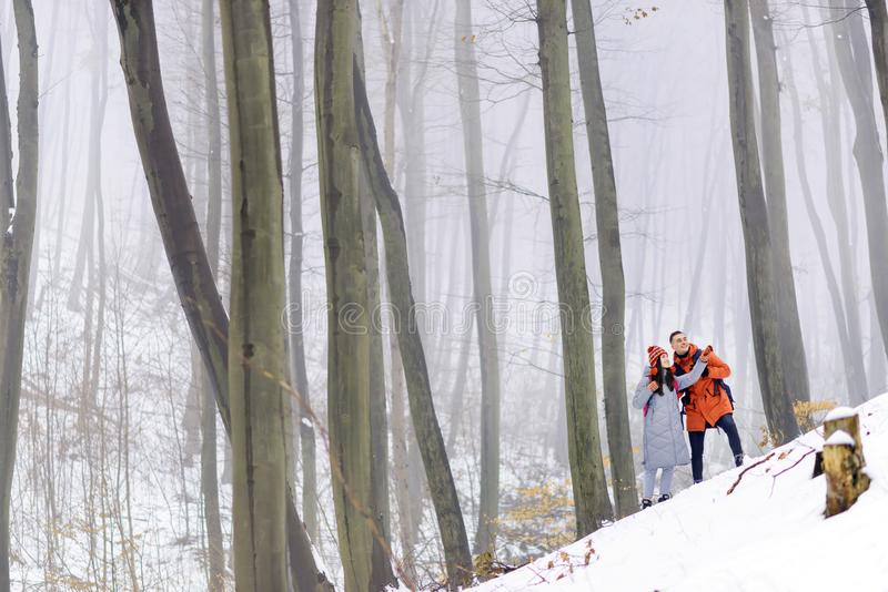 Het lopen in de Winter Forest Hill stock foto