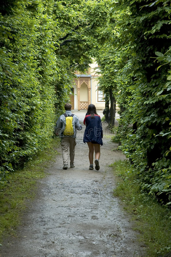 Het lopen door bos stock afbeelding
