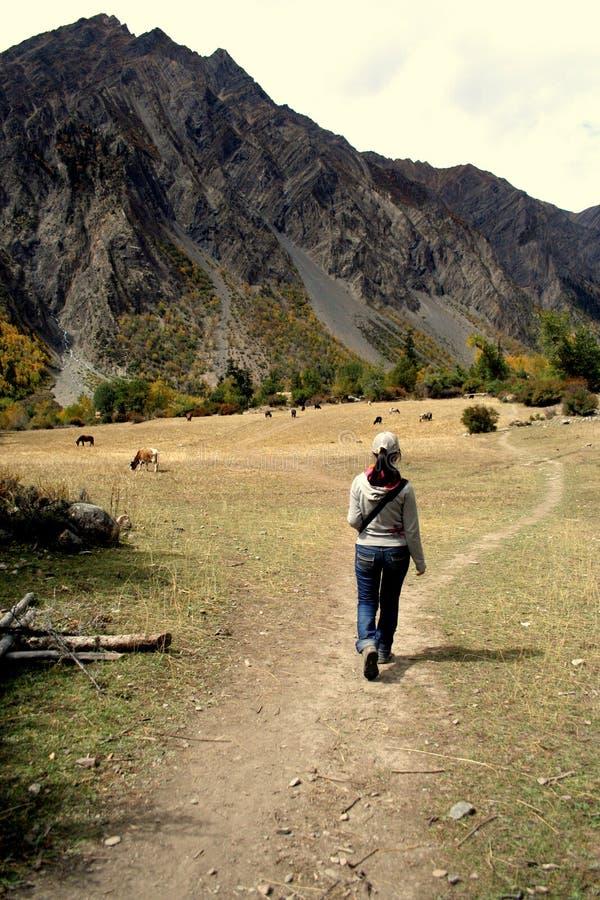 Het lopen door de de valleiweg van Tibet stock foto's