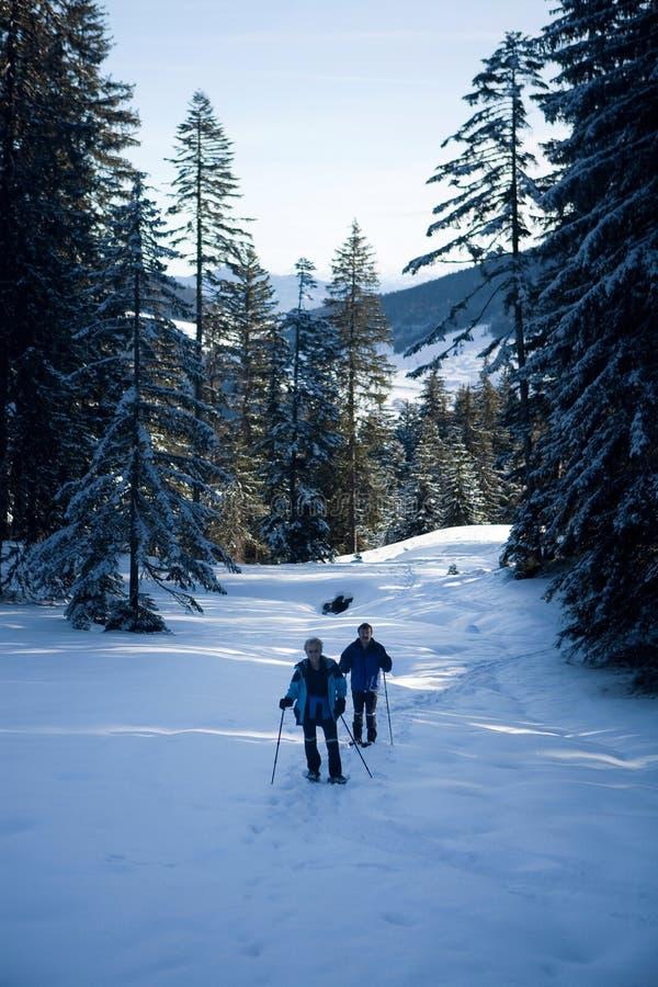 Het lopen door de sneeuw stock foto's