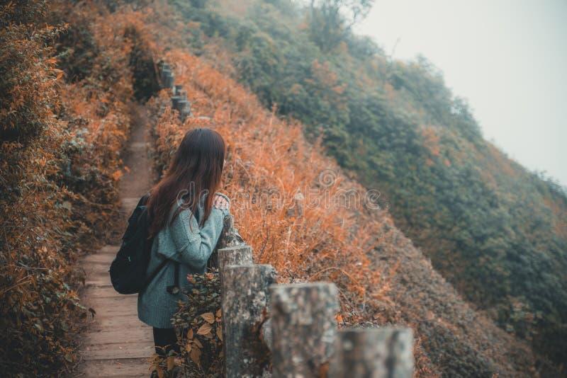 Het lopen en de trekking van een vrouwentoerist langs de bergen in tropisch bos stock fotografie