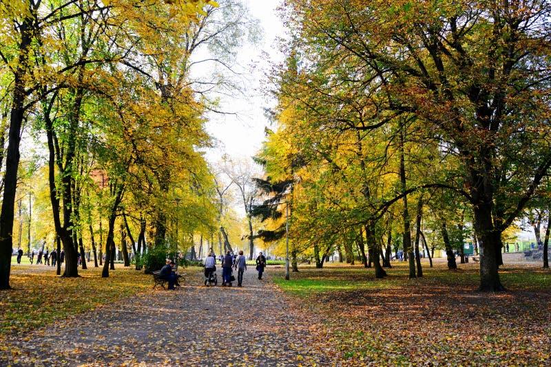 Het lopen in het park van Kathedraalvierkant in Vilnius-stad stock afbeeldingen