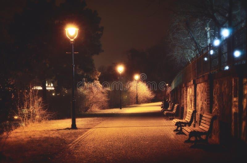 Het lopen in het 's nachts park royalty-vrije stock foto
