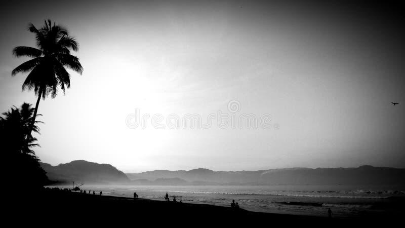 Het lopen langs het strand op de ochtendglorie royalty-vrije stock foto