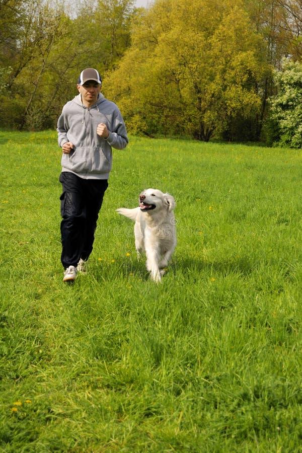Het lopen met de hond royalty-vrije stock afbeeldingen