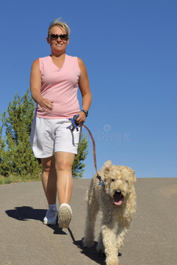 Het lopen met hond stock foto's