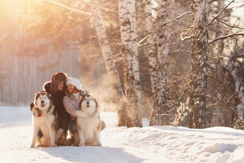 Het lopen met hond in de winter het houdende van paar loopt in sneeuw stock afbeelding