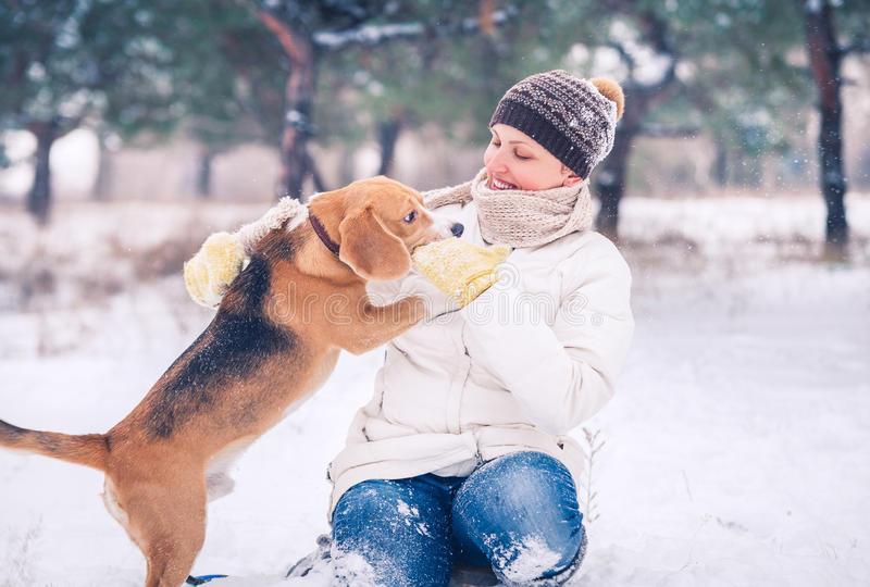 Het lopen met huisdier - de winter actieve vrije tijd stock afbeelding
