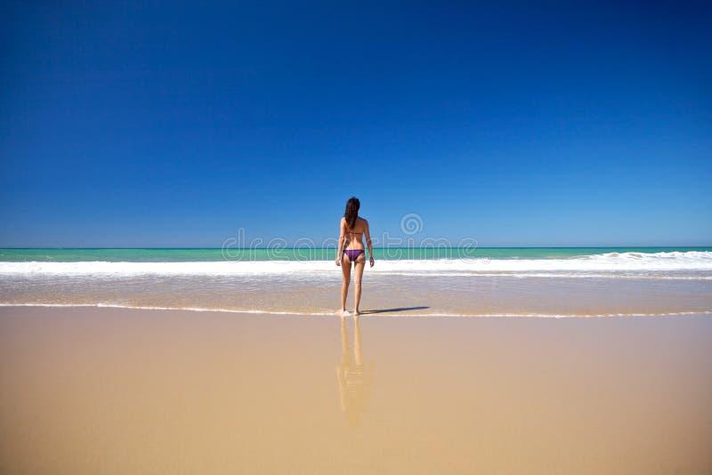 Het lopen naar water bij kust royalty-vrije stock foto's
