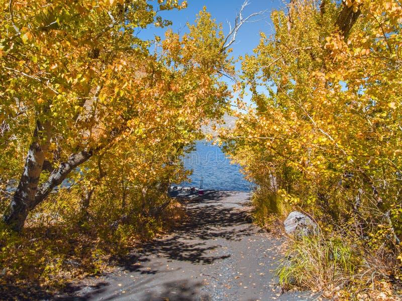 Het lopen onder de herfstbomen aan de kust van een bergmeer royalty-vrije stock foto's
