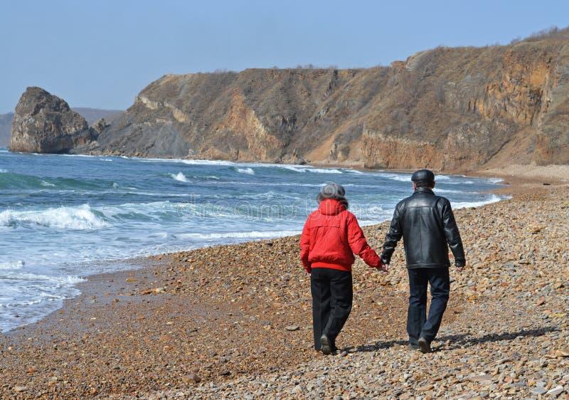 Het lopen op de kust royalty-vrije stock foto's