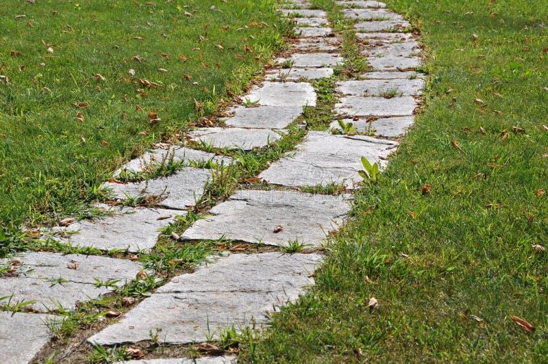 Het lopen op een tuin van de steenweg stock afbeelding