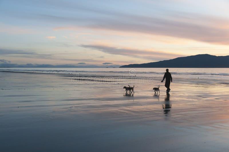 Het lopen op het strand stock afbeelding
