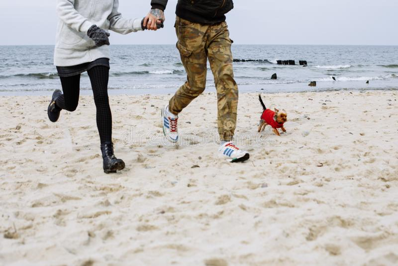 Het lopen op het strand met hond stock foto