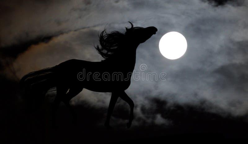 Het lopen paard tegen volle maan royalty-vrije stock afbeeldingen