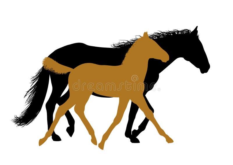 Het lopen paarden - silhouetten stock illustratie