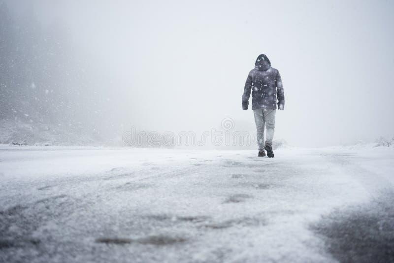 Het lopen in Sneeuw stock afbeelding