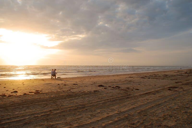 Het lopen van de hond bij zonsopgang stock fotografie