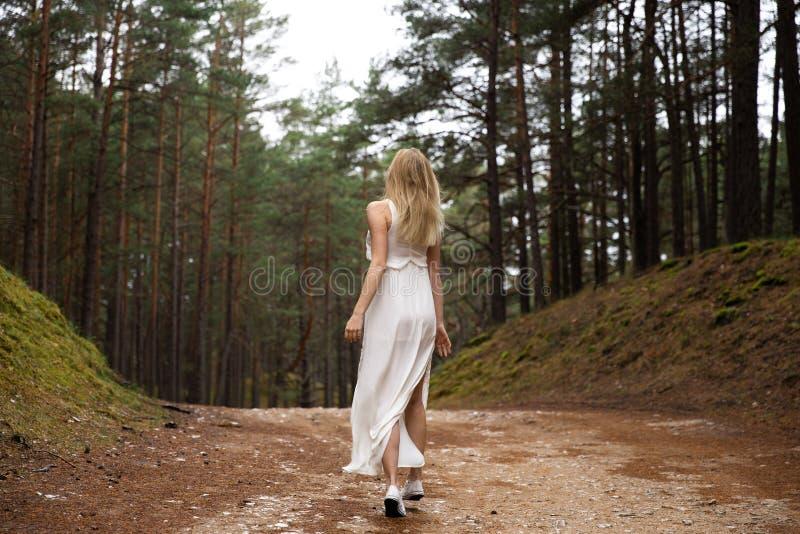 Het lopen van de mooie jonge bosnimf van de blondevrouw in witte kleding in altijdgroen hout stock fotografie