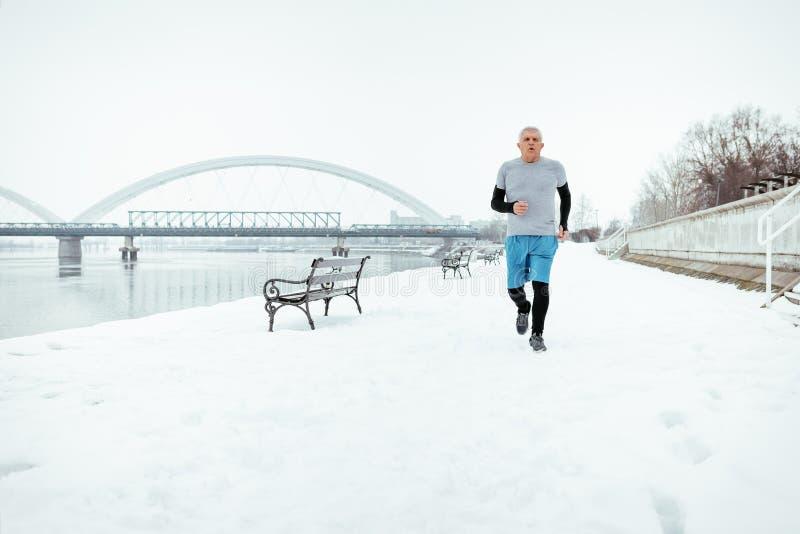 Het lopen van de winter royalty-vrije stock afbeeldingen