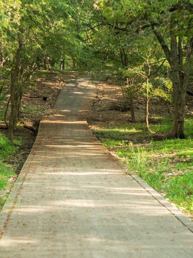 Het lopen van slepen in een stil, rustig, vreedzaam bospark met trillende groene bomen en vegetatie stock afbeelding