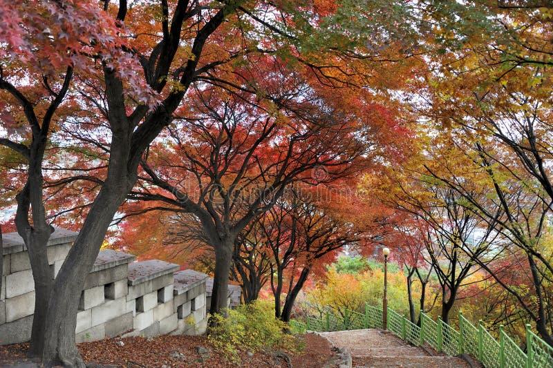 Het lopen van weg langs de Seonggwak-vestingsmuur royalty-vrije stock foto