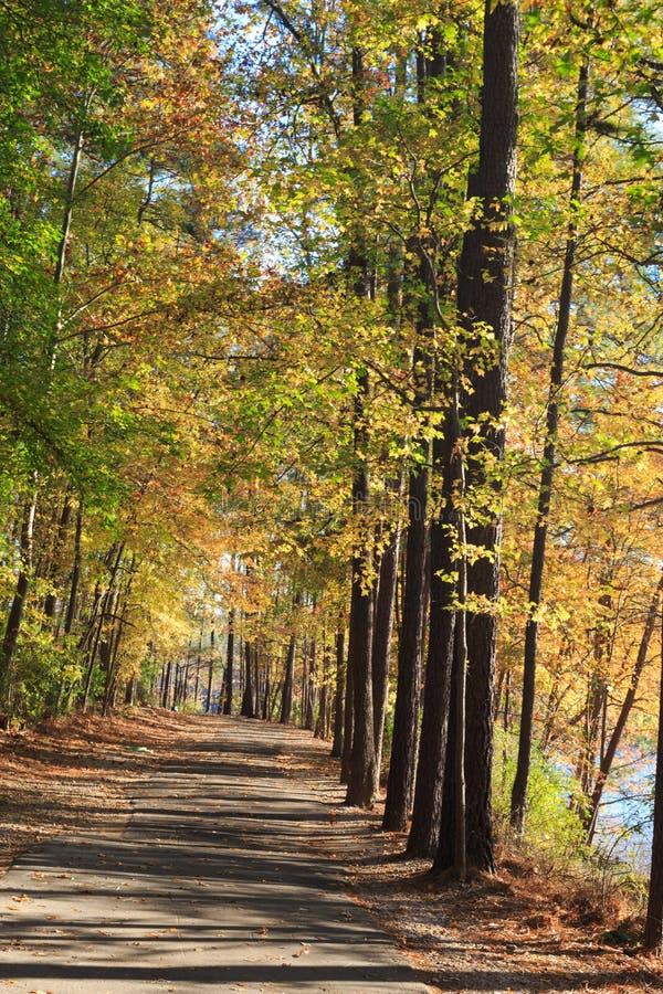 Het lopen van weg in Meer johnson park van Raleigh, NC stock fotografie