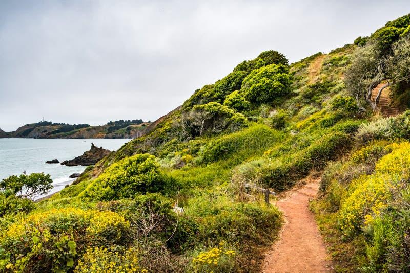 Het lopen van weg op de Vreedzame Oceaankustlijn; mistige dag; Marin Headlands, de baaigebied van San Francisco, Californië royalty-vrije stock afbeelding