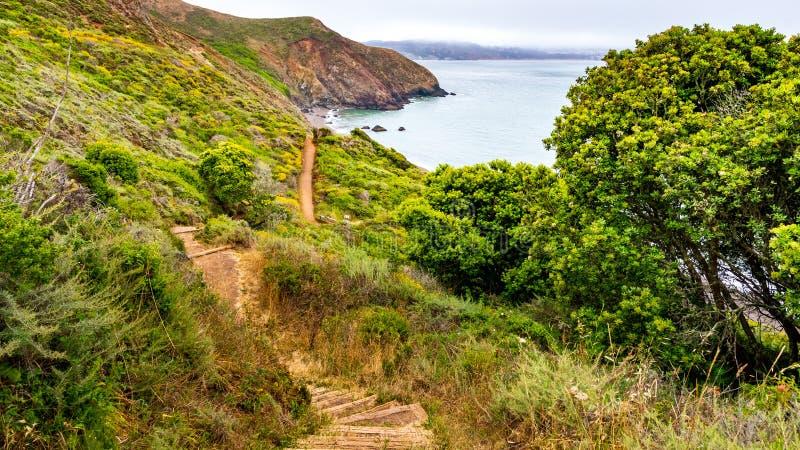 Het lopen van weg op de Vreedzame Oceaankustlijn; mistige dag; Marin Headlands, de baaigebied van San Francisco, Californië royalty-vrije stock foto's