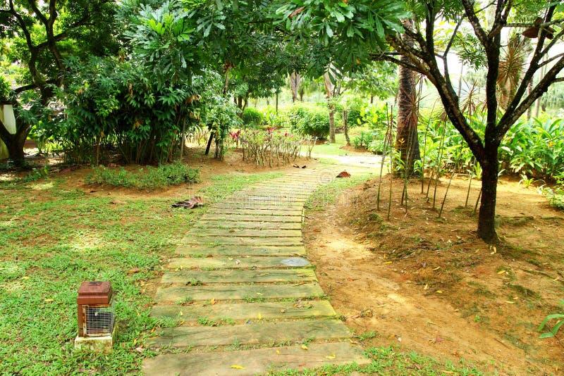 Het lopen van Weg in Tuin stock fotografie