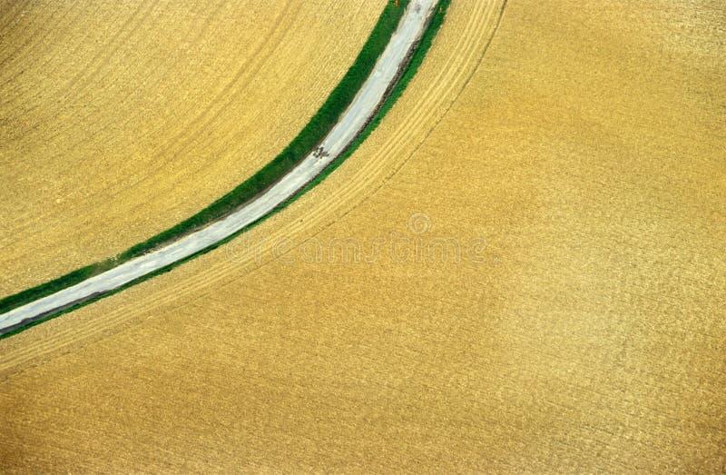 Het lucht Gebied van de Tarwe stock afbeelding