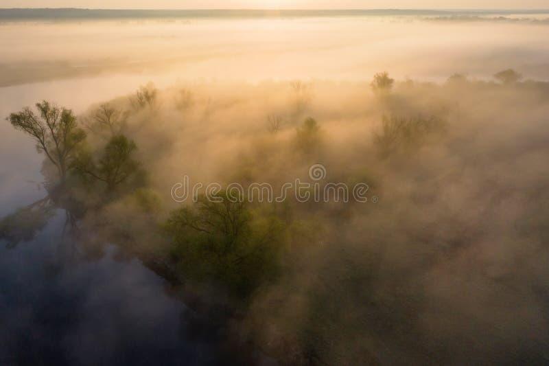 Het luchtlandschap van de de zomeraard in mistige ochtend Nevelige rivieroever bij zonsopgang Rivieraard in mist stock foto