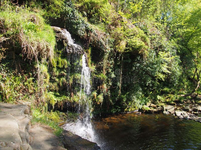 Het Lumbgat valt waterval dichtbij in bos bij crimsworthdeken pecket goed in calderdale West-Yorkshire royalty-vrije stock foto's