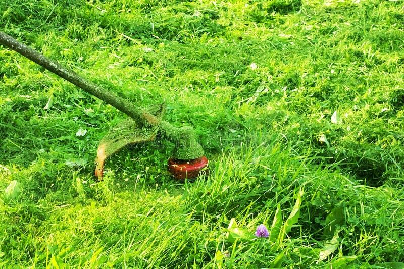 Het maaien van groen wild grasgebied die de maaimachine of de machts het gazonsnoeischaar met behulp van van het hulpmiddelkoord  royalty-vrije stock fotografie