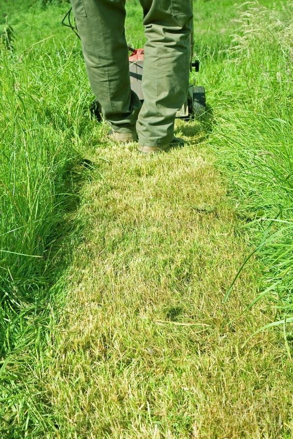 Het maaien van het gras stock fotografie