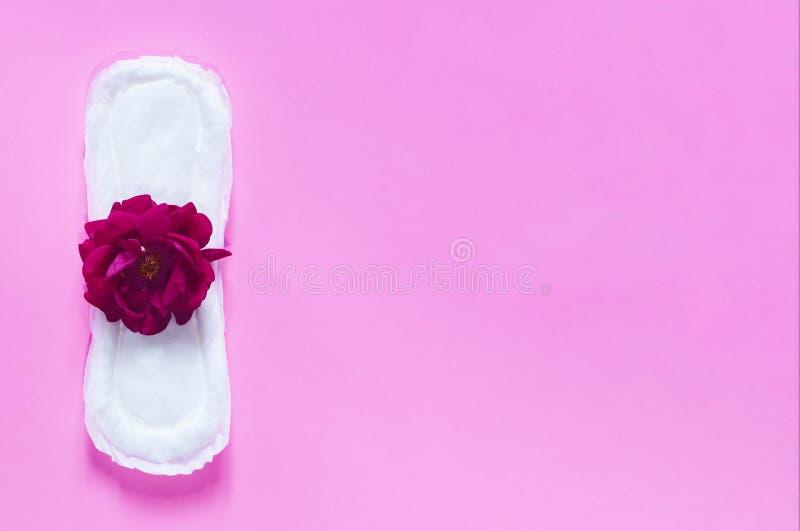 Het maandverband met rood nam op het toe Op heldere roze achtergrond Het concept dat van periodedagen vrouwelijke menstruele cycl royalty-vrije stock fotografie