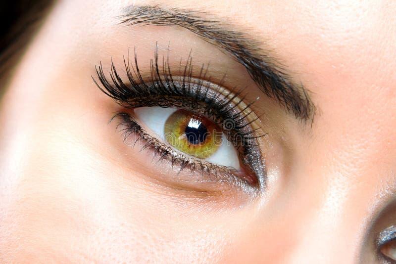 Het macro vrouwelijke oog stock afbeeldingen