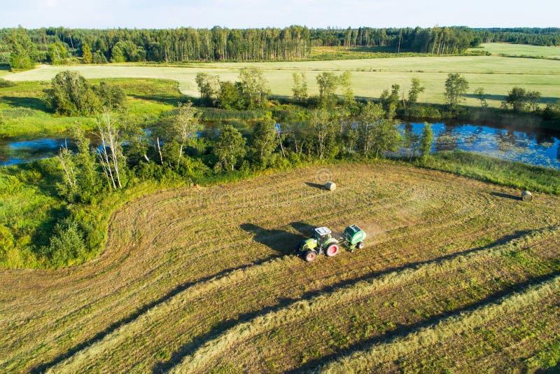 Het maken van hooibroodjes in Estlands platteland stock foto's