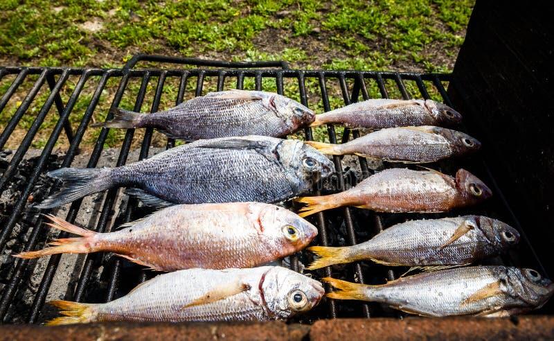 Het maken van vissen op een bbq barbecuegrill over hete steenkool royalty-vrije stock afbeelding