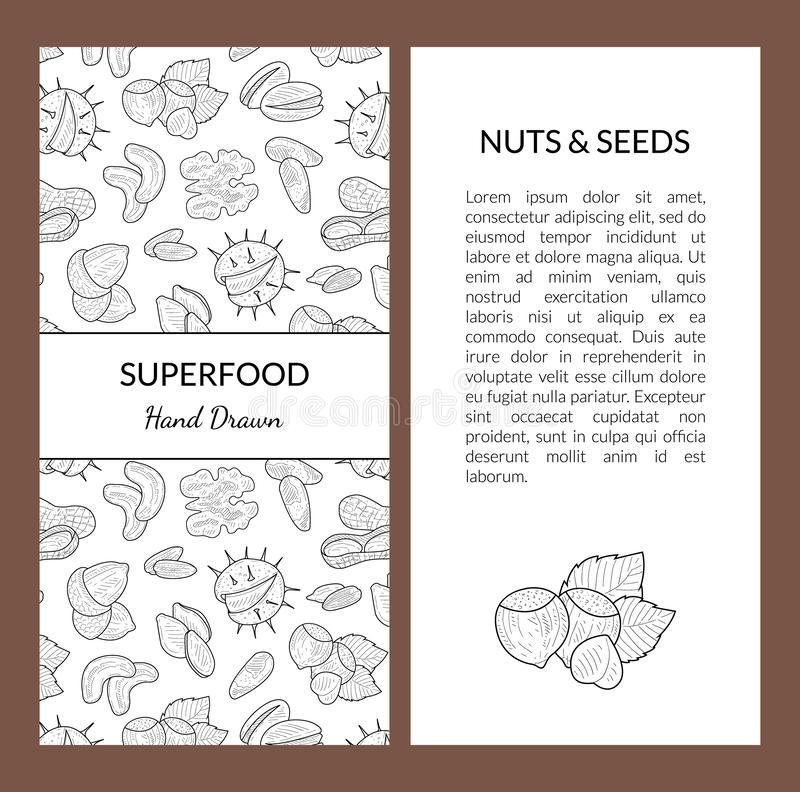 Het Malplaatje van de Superfoodkaart met Plaats voor Uw Tekst, Noten en Zaden, Smakelijke en Gezonde Natuurvoedinghand Getrokken  royalty-vrije illustratie