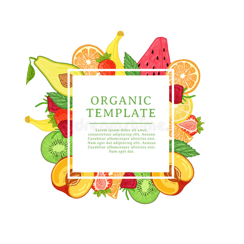 Het malplaatje van het bannerontwerp met tropische fruitdecoratie Vierkant kader met het decor van gezond, sappig fruit Kaart met royalty-vrije illustratie