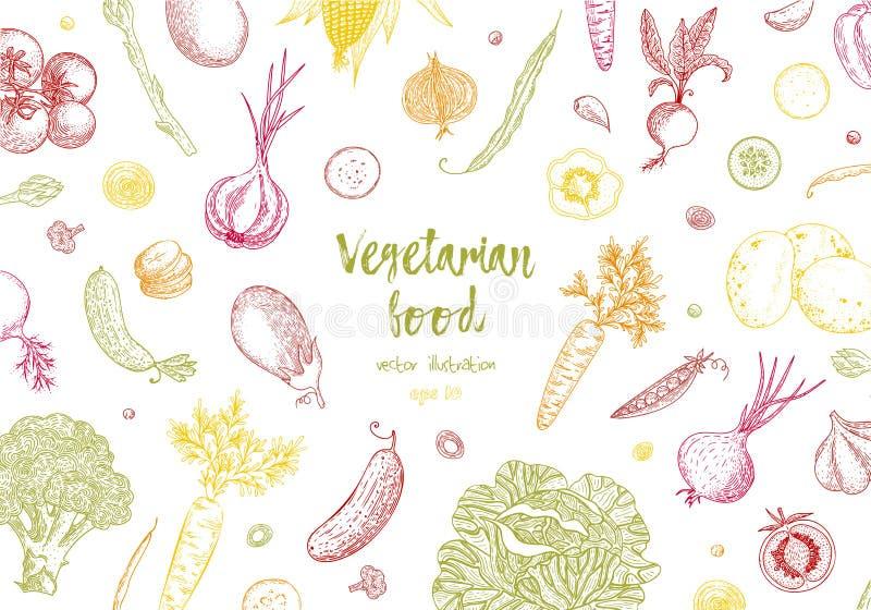 Het malplaatje van het natuurvoedingontwerp Verse kleurrijke groenten Gedetailleerde vegetarische voedseltekening Het product van vector illustratie
