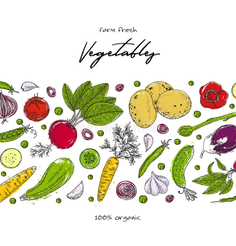 Het malplaatje van het natuurvoedingontwerp Verse product-groenten vegetables Gedetailleerde vegetarische voedseltekening Het pro stock illustratie