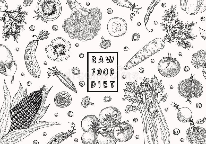 Het malplaatje van het natuurvoedingontwerp Verse product-groenten vegetables Hand getrokken illustratiekader met groenten Econat vector illustratie
