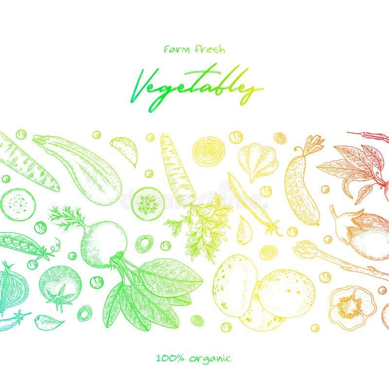 Het malplaatje van het natuurvoedingontwerp Verse product-groenten vegetables Hand getrokken illustratiekader met groenten Kleurr royalty-vrije illustratie