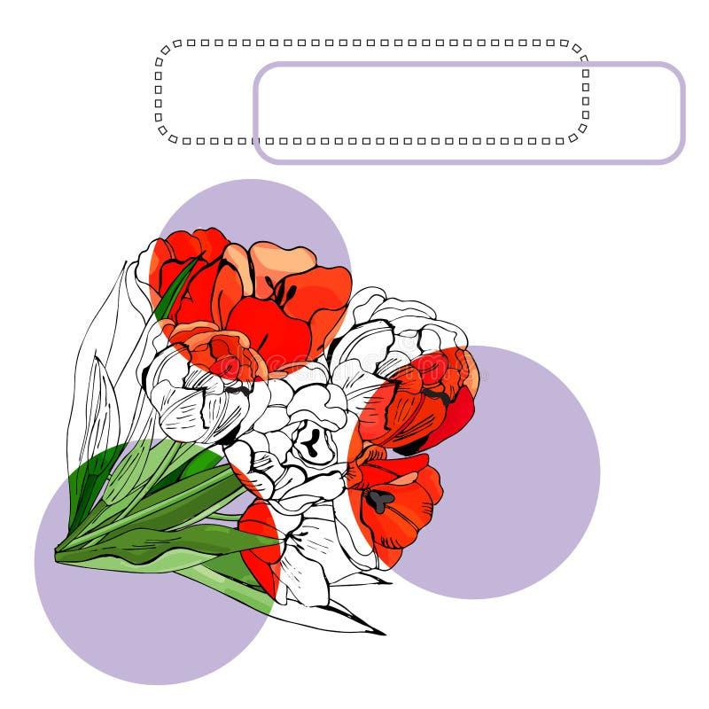 Het malplaatje voor uitnodiging of groetkaart met tot bloei komende rode tulp bloeit, lilac cirkel en kaders Hand getrokken inkts stock illustratie
