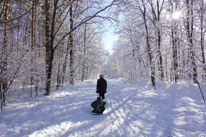 Het mamma rolt haar weinig zoon op buizenstelsel in het Park in de winter Gelukkige familie in openlucht de winterpret voor jonge stock afbeeldingen