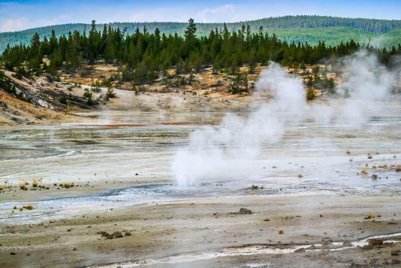 Het Mammoet Hete de Lentesgebied in het Nationale Park van Yellowstone, Wyoming stock foto