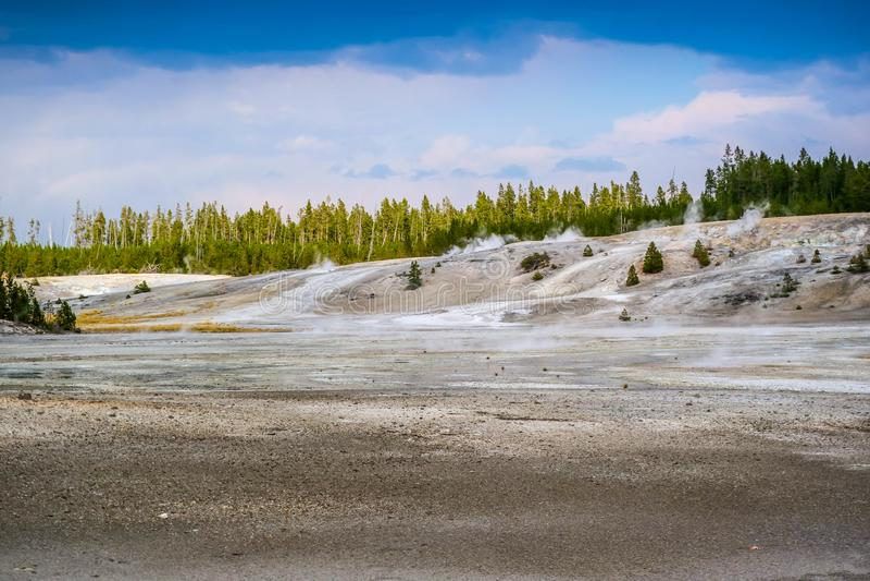 Het Mammoet Hete de Lentesgebied in het Nationale Park van Yellowstone, Wyoming stock afbeeldingen